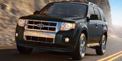 2011 Ford Escape 4WD 4dr XLT, available for sale in Bronx, NY