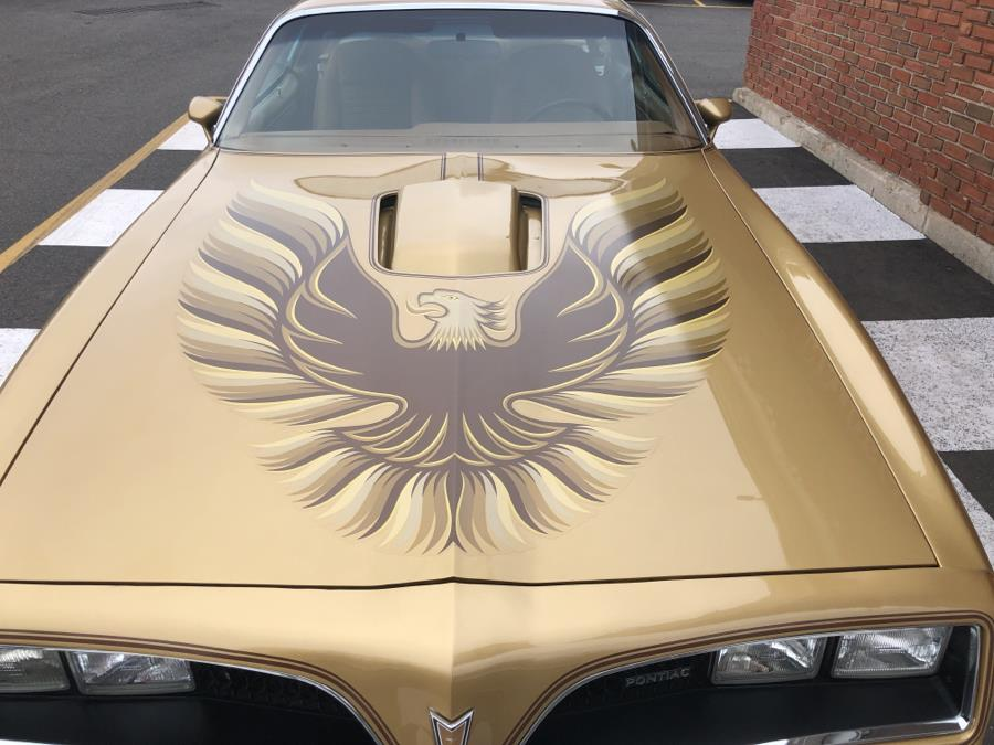 1978 Pontiac Trans Am 6.6, available for sale in Waterbury, Connecticut   National Auto Brokers, Inc.. Waterbury, Connecticut